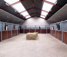 Hoe ziet een dag op het paardenhotel er uit?