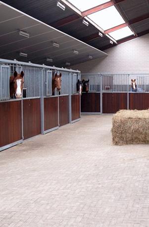 paard-hotel-vakantie-ekenrode