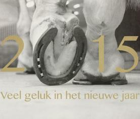 Veel geluk in het nieuwe jaar!